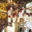 IQOS Wishing Tree, instalația care marchează aniversarea a 4 ani de la lansarea IQOS în România