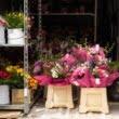 """Cadrele medicale de la """"Matei Balș"""" au primit buchete de flori în semn de recunoștință pentru munca lor"""